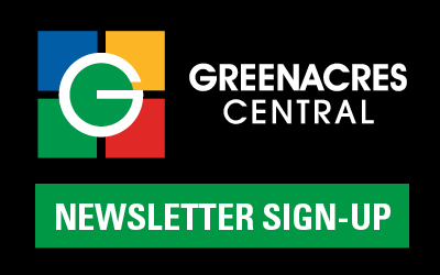 GSC Newsletter button